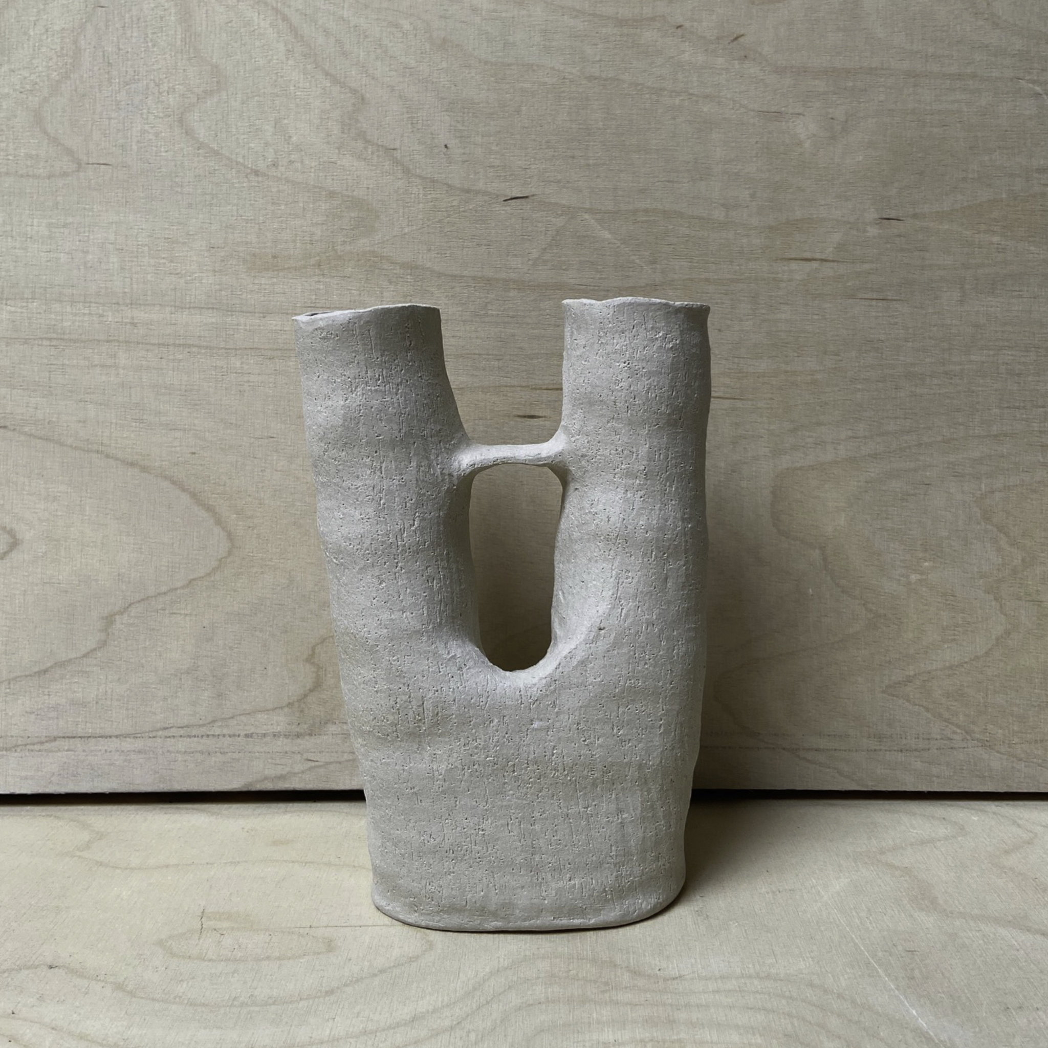 Anne Marie Peters Raw Double Vase 2